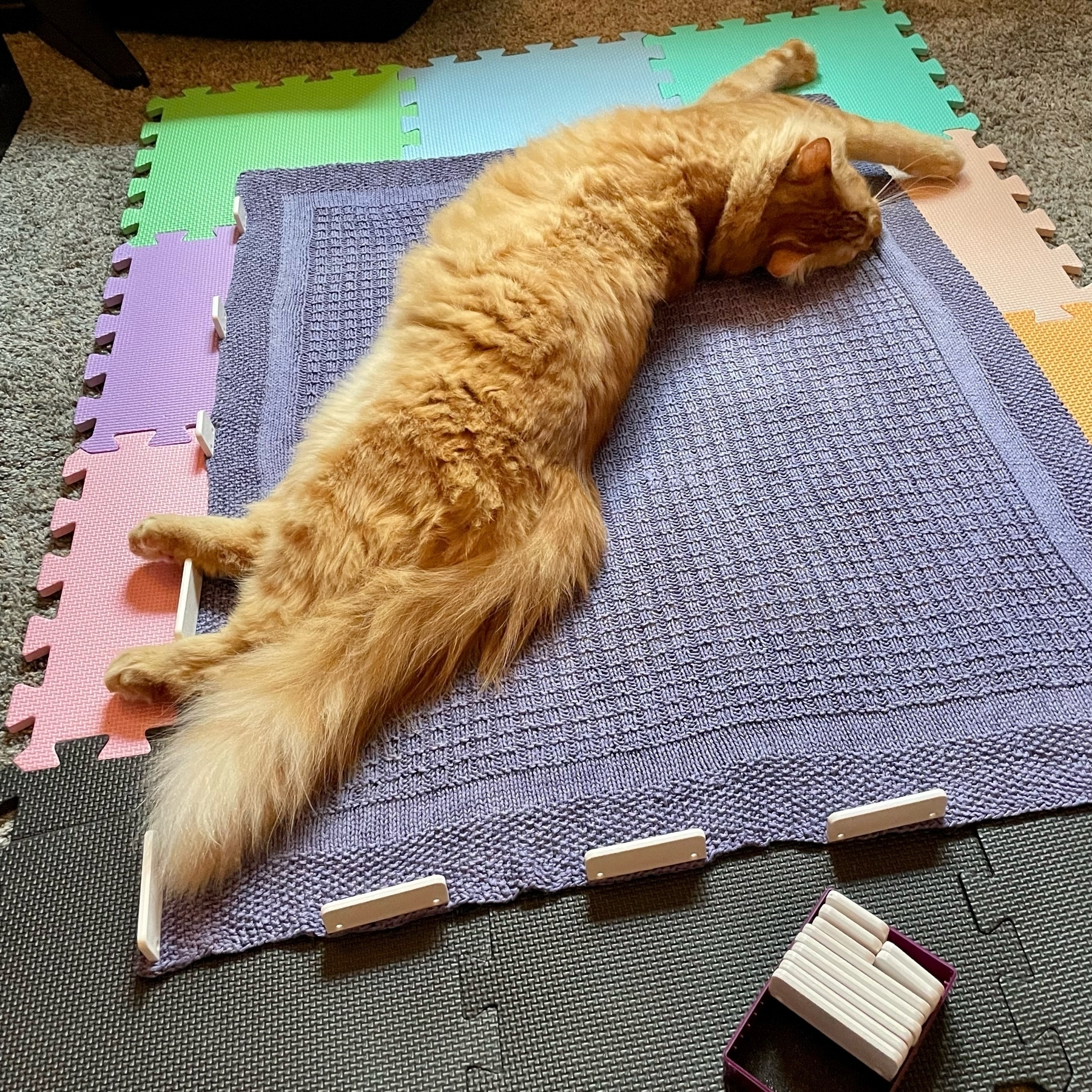 large orange cat stretched out on knitted blanket